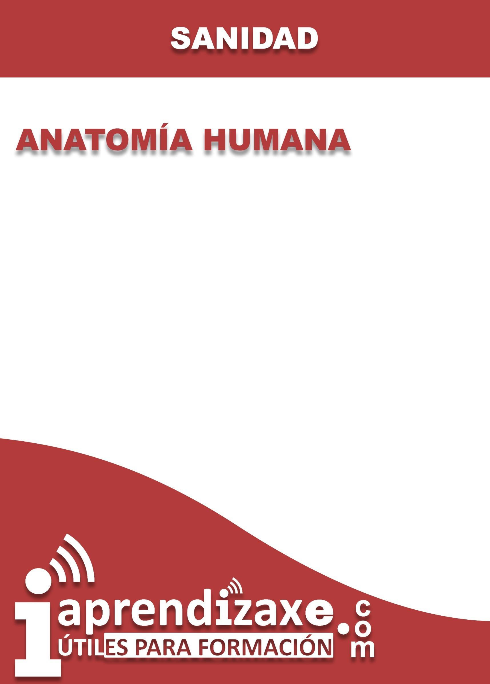 Anatomía Humana - Aprendizaxe